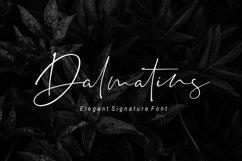 Dalmatins // Elegant Signature Font Product Image 1