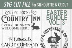 Easter Bundle - Volume 3 - Easter Bunny - SVG Product Image 8