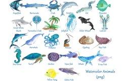 Sea Alphabet Product Image 3