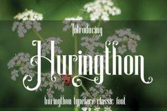 Huringthon Product Image 6