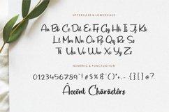 Biograf Modern Handwritten Font Product Image 6