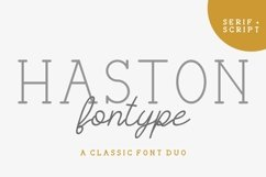 HASTON Product Image 2