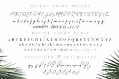 Divine Light Font Duo and extras Product Image 6