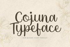 Web Font Cojuna Product Image 1