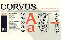 CORVUS Serif font Family Product Image 5