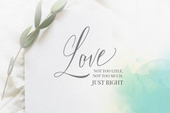 Bride Vibes Script Product Image 2