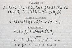 Quincyland an Unique Handwritten Script Product Image 6