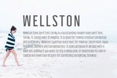 Wellston Modern Sans Serif Font Family Product Image 4