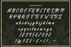 Web Font Santiago Product Image 5