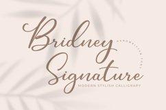 Bridney Signature Product Image 1