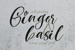 Web Font Ginger & Basil Script Font Product Image 1