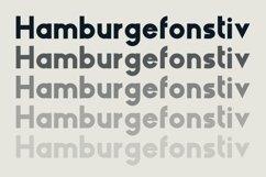 HAUS Sans Extra Bold Product Image 2