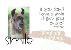 Alpaca My Lunch - Fun and Quirky Font Product Image 2