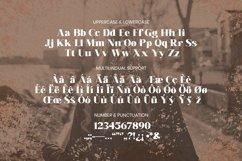 Leocadia Font Product Image 4