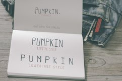 Pumpkin Script Typeface Product Image 4