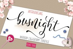 Busnight Font Duo Product Image 1