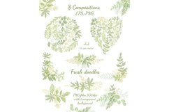 Hand drawn Leaves Branches & Herbs Fresh Doodle collection Product Image 2