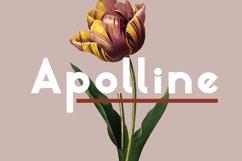 Apolline Product Image 1