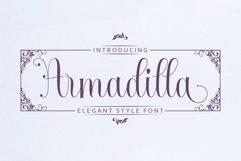 Armadilla Product Image 1