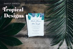 Tropical Illustrations Product Image 8