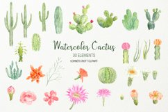 Watercolor clipart cactus for instant download  Product Image 2
