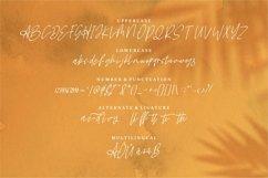 Web Font Antique - A Beauty Script Font Product Image 4