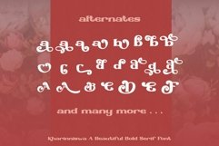 Kharinniswa - A Beautiful Bold Serif Font Product Image 3