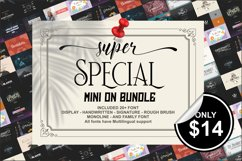 Mini on Bundle Product Image 1