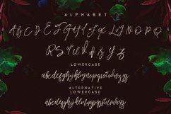 Harmony King - Brush Font Product Image 3
