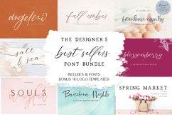 The Designer's Best Sellers Font Bundle Product Image 1