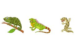Set of Six Reptile Animals Collection Product Image 3