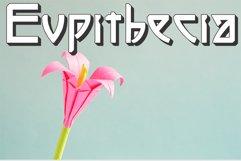 Eupithecia Product Image 1