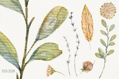 Autumn Time. Watercolor isolated cliparts Product Image 4