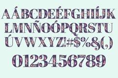 Regia Font Product Image 2