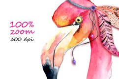 Boho flamingo Watercolor set Product Image 4