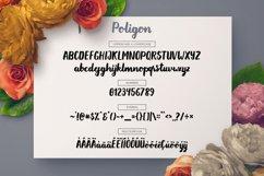 Poligon Product Image 5