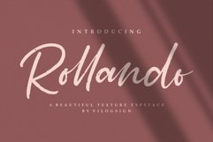 Rollando a texture typeface font Product Image 1