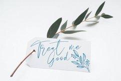 Rallista Chic Signature Font Product Image 8
