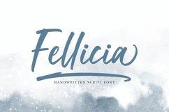 Fellicia Handwritten Font Product Image 1