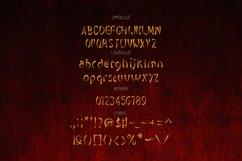 Ninja - Brush Font V2 Product Image 3