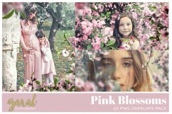 20 PINK BLOSSOMS Photoshop Overlays Product Image 1