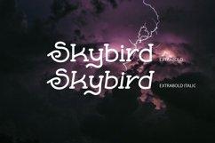 Skybird Family - Crazy, unique & retro Product Image 6