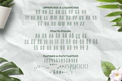 Web Font Dreamcatcher Font Product Image 5