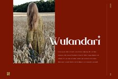 Napalo   Luxury Bold Serif Product Image 4