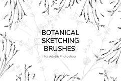 Botanical Brushes for Photoshop Product Image 1