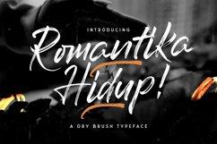 Romantika Hidup - Dry Brush Script Font Product Image 1