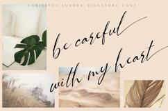 Carllitos // Luxury Signature Font Product Image 3