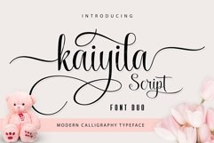 BIG PACKAGE - Font Bundle Collection Product Image 2