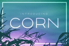 Corn - A clean headline font with Style Product Image 1