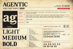 Agentic - Serif font family Product Image 3